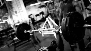 fitness scheda massa
