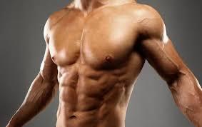 scheda allenamento massa