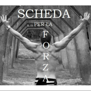 schede forza